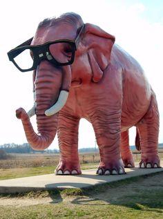 "Deforest, Wisconsin ""Pink Elephant"""