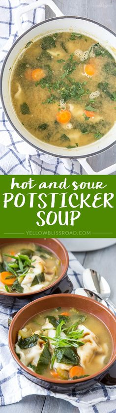 Hot & Sour Potsticke