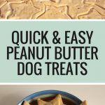 No Bake Dog Treats, Peanut Butter Dog Treats, Easy Dog Treat Recipes, Homemade Dog Treats, Dog Biscuits, Vizsla, Archie, Chester, Baking