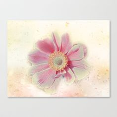 Softly Speaking Stretched Canvas by F Photography and Digital Art - $85.00