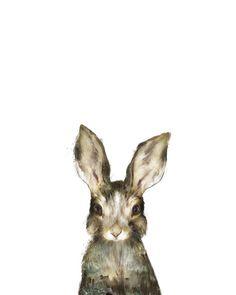Little Rabbit Canvas Print by Amy Hamilton