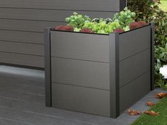 6 foot high wooden planter boxes
