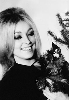 "lovesharontate: "" Sharon Tate with her beloved puppy, Guinness, in a promotional Christmas photo for Eye of the Devil (1966) """