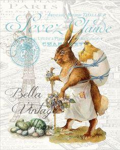 Mother Rabbit in Paris Print
