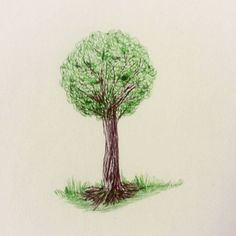Daily drawing 115 with ballpoint pens  #dailydrawing #drawing #ballpointpen #trees #ilovetrees http://ift.tt/2kktVFJ Daily drawing 115 with ballpoint pens dailydrawing drawing ballpointpen tumblr trees ilovetree