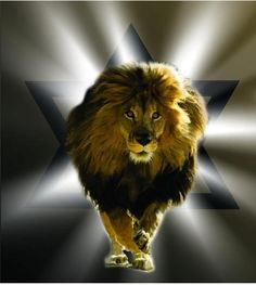 A lion with a Magen Dovid in the background