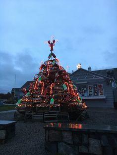 Maine, Christmas Tree, Ocean, Holiday Decor, Home Decor, Homemade Home Decor, Xmas Tree, Xmas Trees, Sea