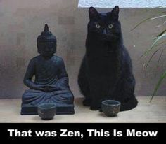 I'm a cat lover and love this. We have 5 cats with us now.... lots of love always :)