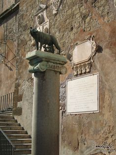 Lupa Capitolina,  Rome,  Italy,  Capitoline Wolf,  Roma