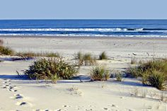 Hammocks Beach State Park, Swansboro, NC. Accessible only by passenger ferry or private boat, there's just one thing at Hammocks Beach that's crowded—the list of things to do.