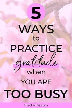 Think you're too busy to practice gratitude? Think again! Here are 5 quick and easy ways to do it so you can enjoy the high vibe goodness from gratitude Gratitude App, Practice Gratitude, Gratitude Ideas, Personal Development Plan Template, Self Development, Life Coaching Tools, Happy Life, Busy Life, Law Of Attraction Tips