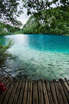 Cuando miras esta foto logras ver la belleza de nuestro planeta. Desde ifeel maps te invitamos a cuidarlo y disfrutarlo con conciencia. visitamos en www.ifeelmaps.com Turquoise, Plitvice Lake, Croatia