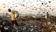Delhi Landfills