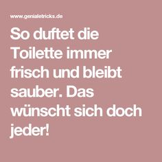 #DIY #Toilet #Tabs (German)