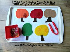 Fall Leaf Color Sort Felt Mat | Stir the Wonder