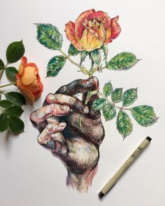 Sensual Drawings of Gnarled Hands Touching Nature | Monday Insta Illustrator | The Creators Project