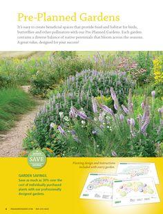 1000 images about native landscape garden on pinterest for Pre planned garden designs