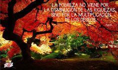 Respirar naturaleza es respirar vida.
