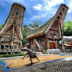 Rumah adat Toraja Kete Kesu dan aktivitas petani Tradisional Toraja #avanzanationjourney @FotoPiknik @Paling Indonesia pic.twitter.com/vhnQqphNUO