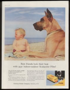 1956 Great Dane dog & baby at beach photo Kodak Brownie camera & film print ad | eBay