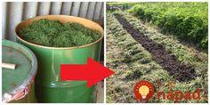 Z odpadu hotový poklad - trávu, ktorú pokosíte na svojej záhrade rozhodne nevyhadzujte - môže vám byť ohromne nápomocná v záhrade.      Kvas z trávy a byliniek  Z pokosenej trávy a rastlín, ktoré sa v nej nachádzajú – Stepping Stones, Planter Pots, Canning, Outdoor Decor, Diy, Gardening, Stair Risers, Bricolage, Lawn And Garden