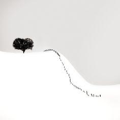 Distant Heart by Ebru Sidar on Art Limited