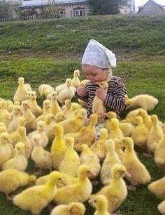 Happiness is Baby ducks. (Except the bird she has in her hand, He is not happy lol) Animals For Kids, Cute Baby Animals, Animals And Pets, Funny Animals, Funniest Animals, Beautiful Creatures, Animals Beautiful, Beautiful Cats, Cute Kids