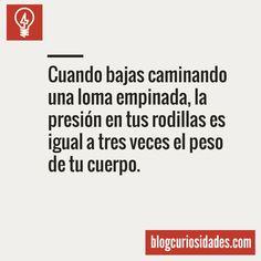 Blogcuriosidades.com