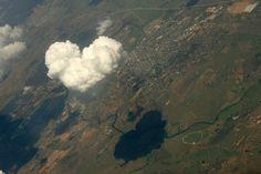 순수한 사랑 동물들의 사랑 하트컨셉이미지~ [바로가기] 하트(hearts)관련 예쁜이미지모음 [바로가기] 새로운 사랑이미지(Love), 사랑느낌의 예쁜이미지모음