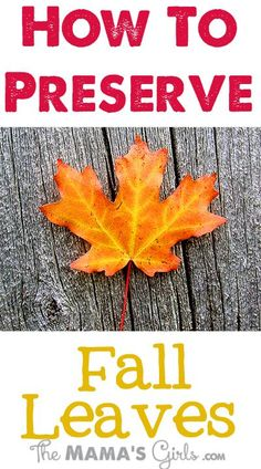 The Mama's Girls: How to Preserve Fall Leaves