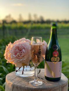 Newstead Wines, Plettenberg Bay Wine Sale, Wine Wednesday, Sparkling Wine, Wines, Vineyard, Alcoholic Drinks, Weddings, Glass, Drinkware