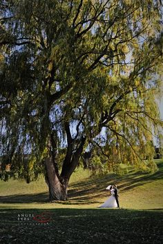 The Chalet at The Grand Geneva Resort,  Wisconsin wedding photographer (24)