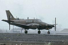 Aigle Animal, Top Gun, Us Army, Military Aircraft, Fighter Jets, Pilot, Aviation, King, Vietnam War