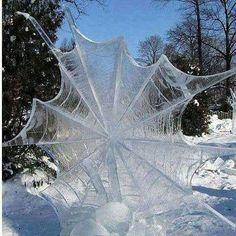 Frozen Spider Web Merritton, ON