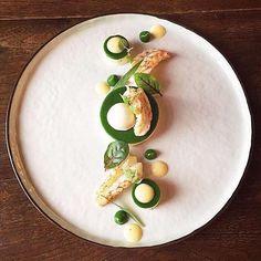 Langoustine, spinach, and salmon bavarois by @mathieu_leclef #TheArtOfPlating