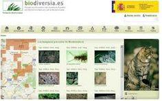 Biodiversia es una plataforma interaciva del Inventario Español de Patrimonio Natural y de la Biodiversidad. Wordpress, Desktop Screenshot, Natural, Platform, Nature, Au Natural