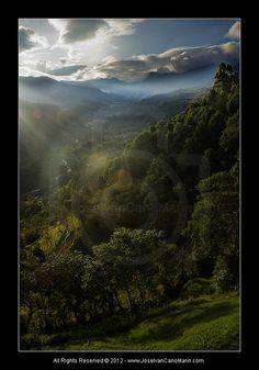 Colombia, Los Andes (Quindio)