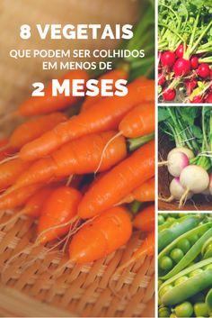 Você ficará surpreso em saber como que alguns vegetais crescem super rápido, portanto não plante muitos de uma vez, vá com calma e desfrute!