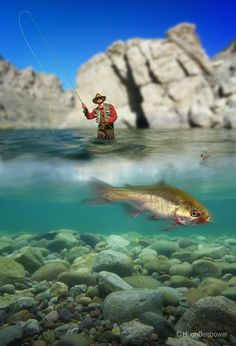 www.beebower.com   Here's a new photo that Dad created for his fly fishing series. He used a water proof camera to capture the bass's image and then merged the fish with the fisherman's photo. He finished this latest piece of art with the rock formations in the background.   #flyfishing #fishing #bass #fisherman #fishingphotos