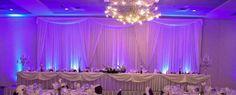 Wedding Party Table Backdrop