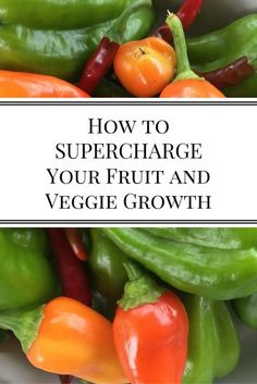How to Supercharge Your Fruit and Veggie Growth | Nourishing Pursuits | I listed…