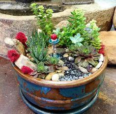 Miniature Plants, Miniature Gardens, Container Gardening, Bonsai, Cactus, Planters, Miniatures, Creative, Flowers