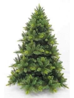 Cambridge Christmas Tree