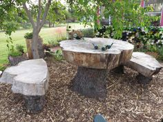 Large log slabs made into a table and benches. Logs were all free.