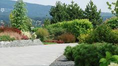 Természetes terméskő támfal évelőkkel/ Natural stone wall with perennials