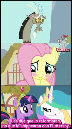 Equestria Girls, My Little Pony Equestria, Fluttershy, Mlp, Discord, Little Poni, Imagenes My Little Pony, Girl Memes, Family Guy