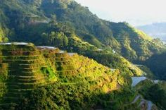 TripBucket - We want You to DREAM BIG! | Dream: See Banaue Rice Terraces, Philippines