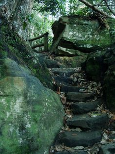 Love this!  It reminds me of Hocking Hills, Logan, Ohio, one of my favorite places to hike!