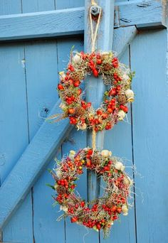 Mohn mohnkapsel Kranz  orange rot  herbstkranz | poppy wreath