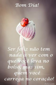 Mensagem de bom dia Woman Skirts man looking up woman's skirt Portuguese Quotes, Happy Week End, Good Morning Good Night, Lessons For Kids, Words Quotes, Texts, Positivity, Thoughts, Inspiration